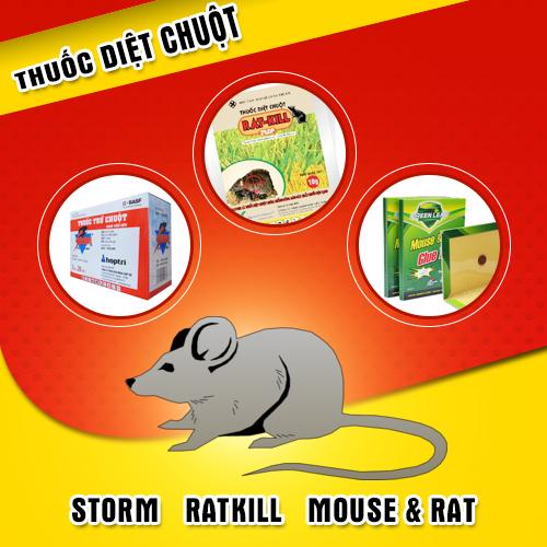 Giải pháp giệt chuột tốt nhất