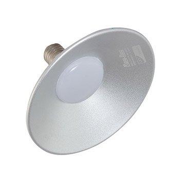 Đèn led Lowbay D LB01L/10W Rạng Đông